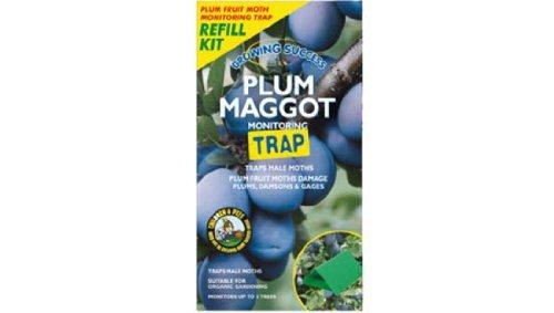 Growing Success Plum Maggot Monitoring Trap Refill Westland