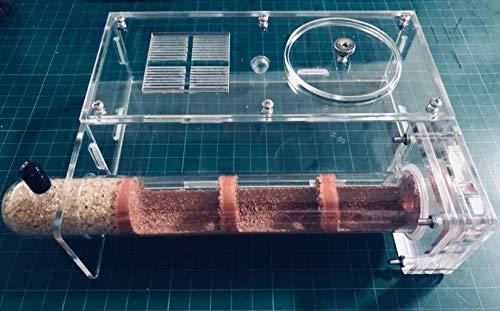 ROUND YUAN Bambus Glasröhren EIN Set Ant Königin Nest Anthills Kinder Wissenschaft Biologische Klasse Bewahrungsgerät DIY Spielzeug Geburtstagsgeschenk (30mm)