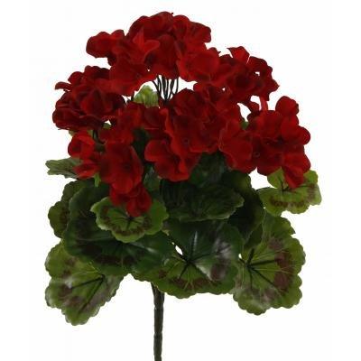 Red Outdoor Rated Geranium Bush