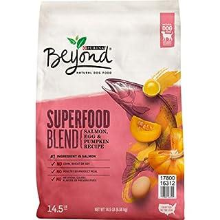 Purina Beyond Natural Dry Dog Food, Superfood Blend Salmon, Egg & Pumpkin Recipe - 14.5 lb. Bag