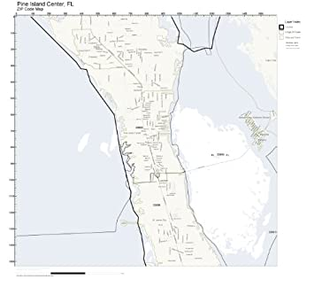 Amazon.com: ZIP Code Wall Map of Pine Island Center, FL ZIP ...