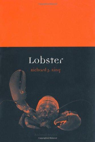 Lobster (Animal)