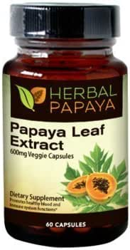 Papaya Leaf Extract - SuperFruit Natural Blood Platelet Boost, Bone Marrow Support, Immune Gut & Digestive Enzymes Health - 10:1 Strength - 60/600mg Veggie Capsules - Made in USA by Herbal Goodness