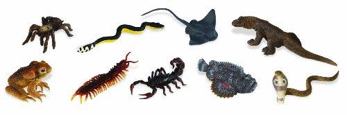 Safari Ltd  Venomous Creatures TOOB