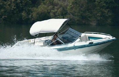 (Carver Covers V3681TB; Bimini Top 3 Bow 36 inch Vinyl 79 In-84 In Made By Carver Covers)