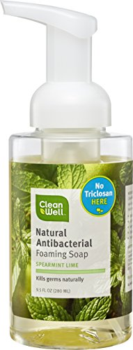 CleanWell Natural Antibacterial Foaming Hand Soap - Spearmint Lime, 9.5 Ounce (Pack of 4)
