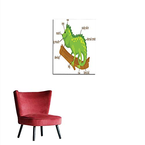 Photo Wall Paper Illustration of Iguana Vocabulary Part of Body Mural -