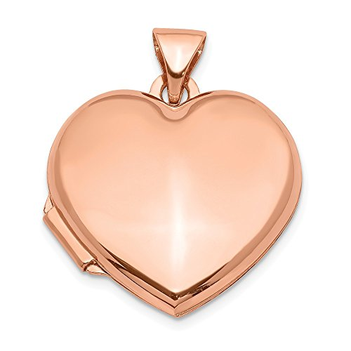 14k Rose Gold 18mm Domed Heart Photo Pendant Charm Locket Chain Necklace That Holds Pictures Fine Jewelry Gifts For Women For ()