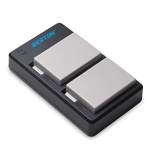 BESTON 2 Pack LP E8 Battery Pack and USB Rapid Charger for Canon EOS 550D 600D 650D 700D Rebel T2i T3i T4i T5i Kiss X4 X5 X6 Camera!