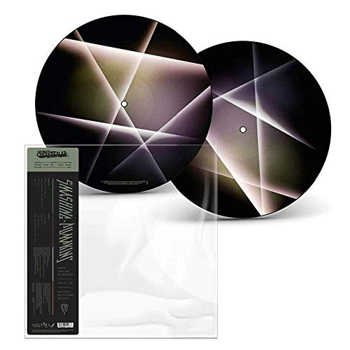Shiny And Oh So Bright Vol. 1 / No Past No Future No Sun (Picture Disc) (Rsd)