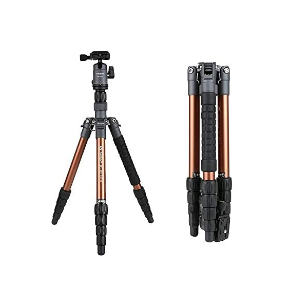 RetinaPix Fotopro X-Go Gecko 5ft Aluminium Tripod Stand with Ball Head for DSLR Camera Payload 8 kg (Brown+Gray)