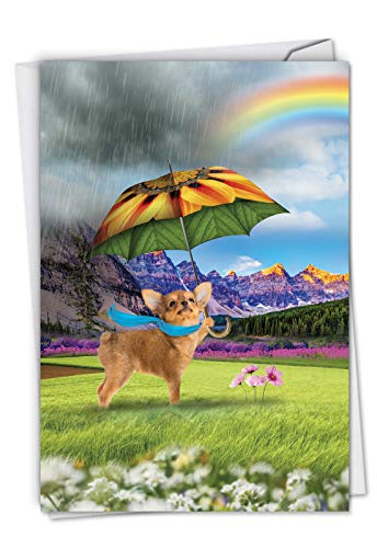 Raining Dogs : All Occasions Card Showing Lovable Pups Enjoying the Wet Weather, with Envelope. C6823BOCG