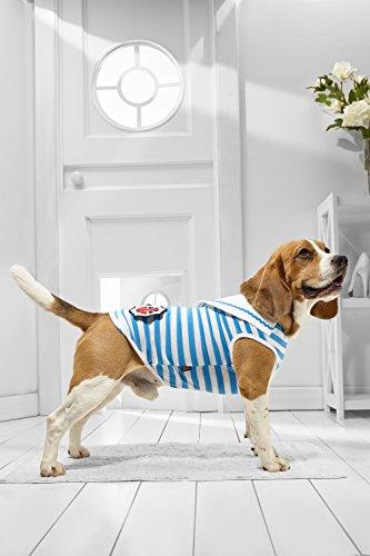 Medium Dog Sailor Tank Top for Beagle Sheltie Westie Cocker Spaniel Dachshund (Small Medium Size, light blue, white) (Cocker Spaniel Dachshund)