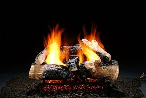 light Inferno 21 inch Gas Log Set with Burner ()