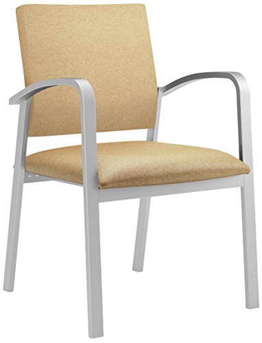 Health Care Guest Chair - 6