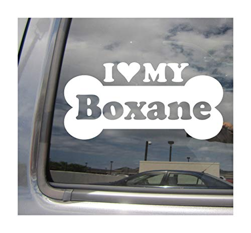 I Heart Love My Boxane - Dog Bone Boxer Great Dane Mix Hybrid Breed Cars Trucks Moped Helmet Hard Hat Surfboard Skateboard Auto Automotive Craft Laptop Vinyl Decal Store Window Wall Sticker 13196 (Best Great Dane Mixes)