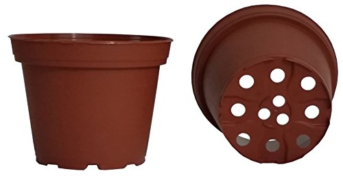 c Nursery Pots TEKU ~ Pots ARE 3.25 Inch Round At the Top and 2.44 Inch Deep. Color: Terracotta (Deep Terra Cotta)