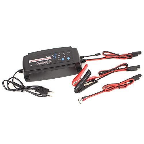 Smart Car Battery Charger | Cheap Replacement Smart Car