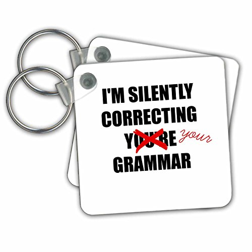 3dRose Silently correcting your grammar - Key Chains, 2.25 x 2.25 inches, set of 2 (kc_212173_1)