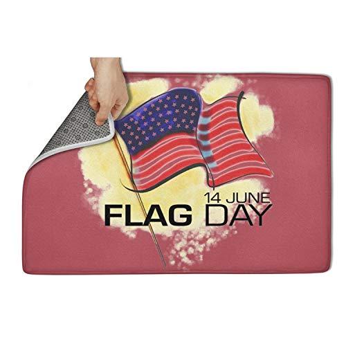 Gaaskelled Indoor Outdoor Entrance Rug,14 June American Flag Day Non Slip Duty Front Entrance Door Mat Rug,Easy Clean Door Mat (23.5