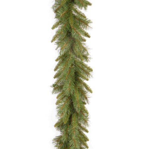National Tree 9 Foot by 10 Inch Tiffany Fir Garland (TF-9A) by National Tree Company