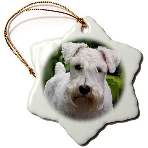 (Delia32Agnes White Schnauzer Christmas Ornaments Funny Novelty Porcelain Hanging)