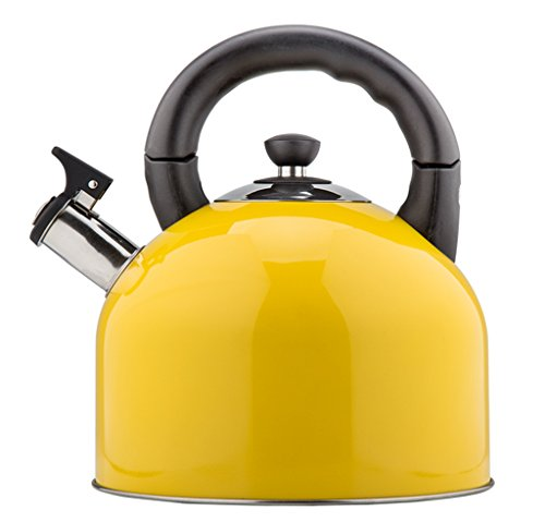 Kettle teapot coffee pot home kitchen automatic whistle kettle kettle cooker kettle outdoor camping kettle (Color : D)