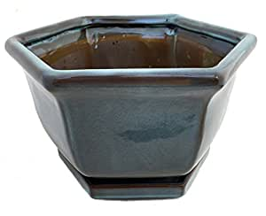 "Bonsai/plantas macetero de cerámica/. Platillo + fieltro feet-celadon-111/4""x 10"" x 61/2"""