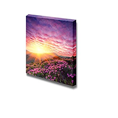 Spring Landscape in Mountains with Flower of a Rhododendron and The Sky with Cloud - Canvas Art Wall Art - 16
