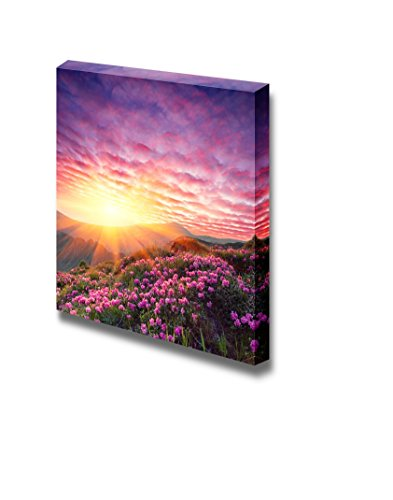 Spring Landscape in Mountains with Flower of a Rhododendron and the Sky with Cloud Wall Decor
