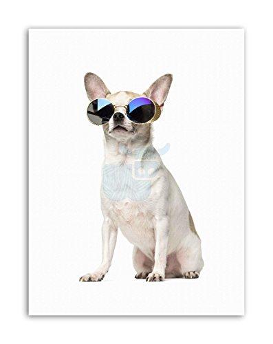 COMPOSITION CHIHUAHUA SHADES SUNGLASSES DOG Canvas art - Uk Dog Sunglasses