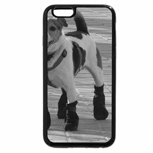 iPhone 6S Case, iPhone 6 Case (Black & White) - Winter dog :