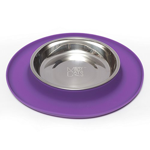 messy-cats-stainless-steel-cat-feeder-with-non-slip-silicone-base
