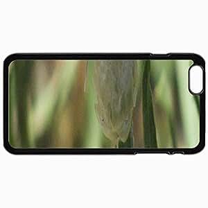 Fashion Unique Design Protective Cellphone Back Cover Case For iPhone 6 Plus Case Butterfly 2 In Mahdishahr Black