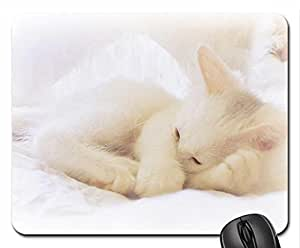 An Angel Mouse Pad, Mousepad (Cats Mouse Pad)