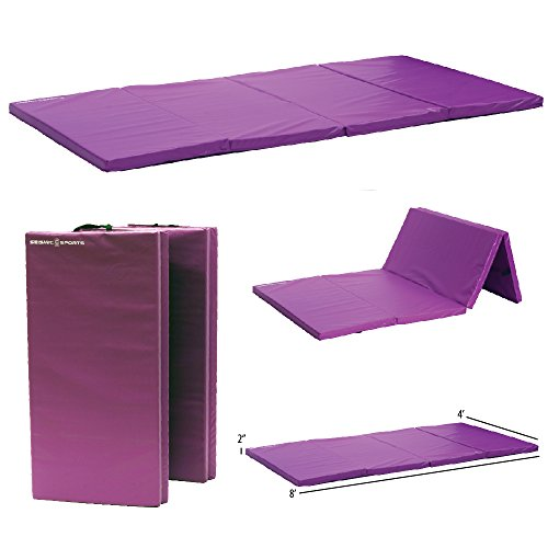 Seismic Sports - SSM-4102Purple - Purple Gymnastics Mat for Tumbling Yoga Exercise Karate Cheer, 4' x 10' x 2' by Seismic Sports