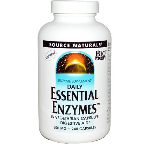 Source Naturals Essential Enzymes 500mg Daily Digestive Aid with BioAlign - 240 Vegetarian Capsules