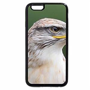 iPhone 6S / iPhone 6 Case (Black) Ferruginous Buzzard