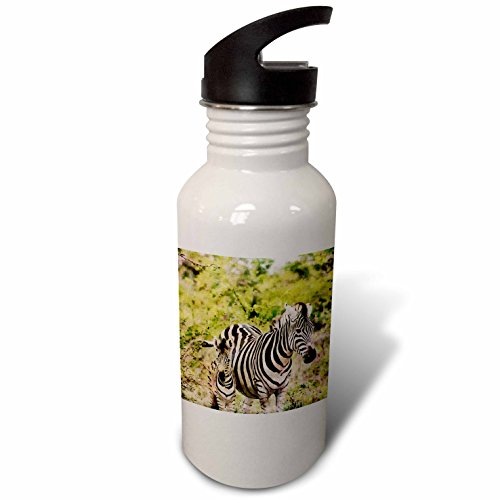 3dRose Andrea Haase Animals Illustration - Zebra Mother With Child Watercolor Illustration - Flip Straw 21oz Water Bottle (wb_268155_2) by 3dRose
