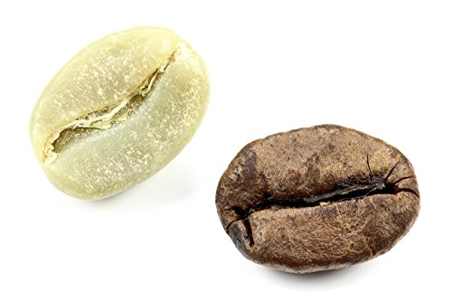 3 lbs | Single Origin 100% Arabica Specialty Green Unroasted Coffee | Thailand | Direct Trade |