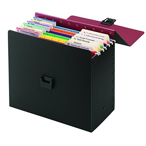 Smead Life Documents Organizer Kit (92010)