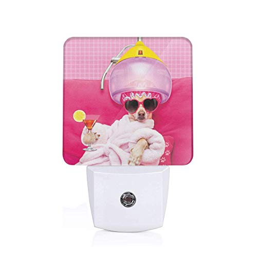 Colorful Plug in Night,Chihuahua Dog Relaxing and Lying in Wellness Spa Fashion Puppy Comic Print,Auto Sensor LED Dusk to Dawn Night Light Plug in Indoor for Childs Adults -
