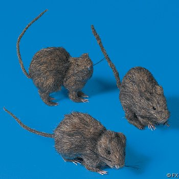 Set if 3 Hairy Rats - 5 inches long