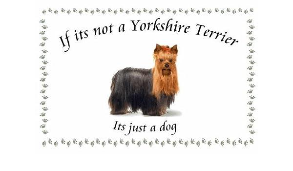 Yorkshire Terrier - perro flashsellerz Llaveros - si no es ...
