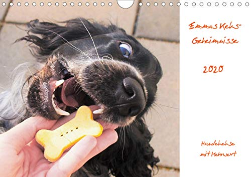 Emmas Keks-Geheimnisse (Wandkalender 2020 DIN A4 quer): Hundekekse mit Mehrwert (Monatskalender, 13 Seiten) (CALVENDO Tiere) [Calendar] Riegler, Julia -  9783671020423