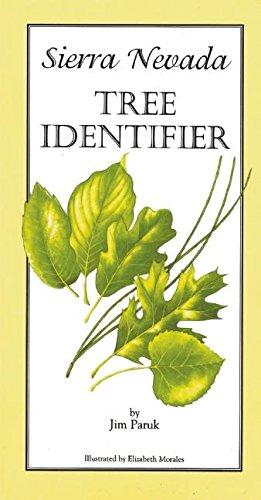 Sierra Nevada Tree Identifier