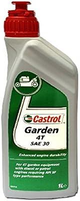 CASTROL Garden 4T aceite SAE 30 x 1Lt tagliareba desbrozadora ...