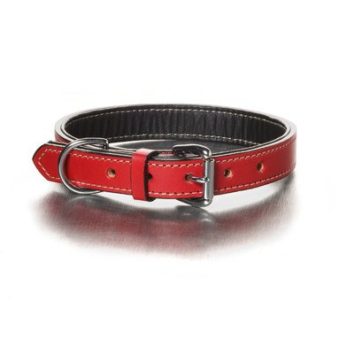 Woofwerks Simply Red Collar, 3/4-Inch by 16-Inch