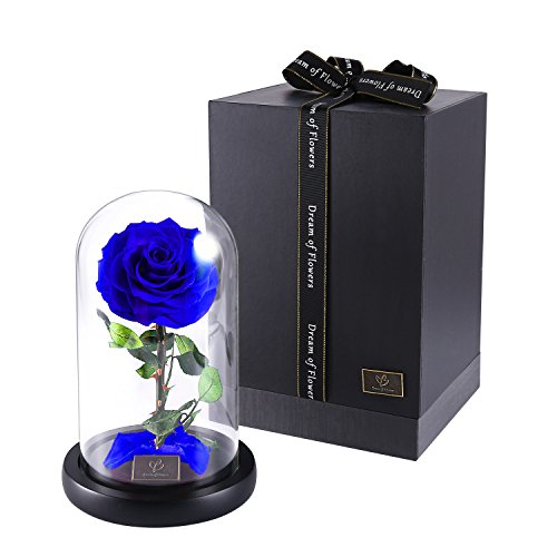 Rose Flowers, Forever Flowers, Glamorous Rose Glass, Roses in Glass Dome Wood Base, Family Holiday Party Valentine's Day Creative Gifts, Wedding Gifts, Best Gifts for Her (blue) by Dream of Flowers (Image #8)