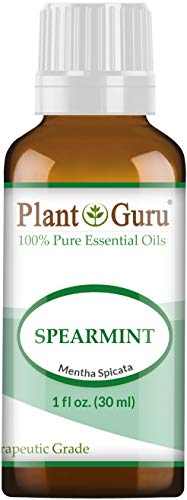 Spearmint Essential Oil 1 oz / 30 ml 100% Pure Undiluted Therapeutic Grade for Aromatherapy Diffuser, Promotes Digestion, Great for Focus and Concentration